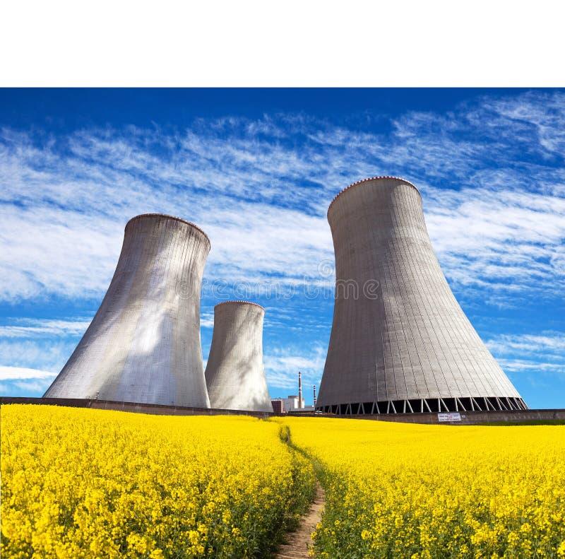 Torre di raffreddamento con il campo di fioritura dorato del seme di ravizzone fotografia stock