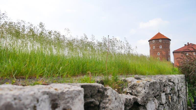 Torre di Sandomierz, castello di Wawel, Polonia fotografia stock