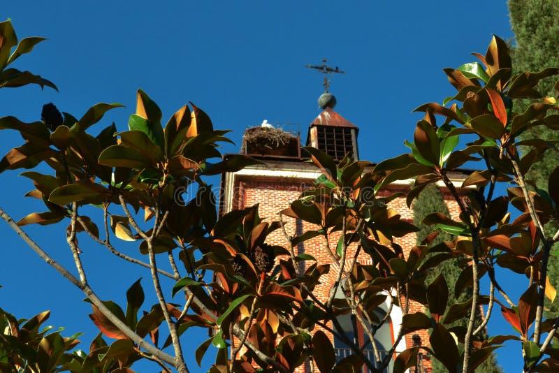 Torre di vecchia chiesa con un incrocio e un nido della cicogna immagini stock libere da diritti
