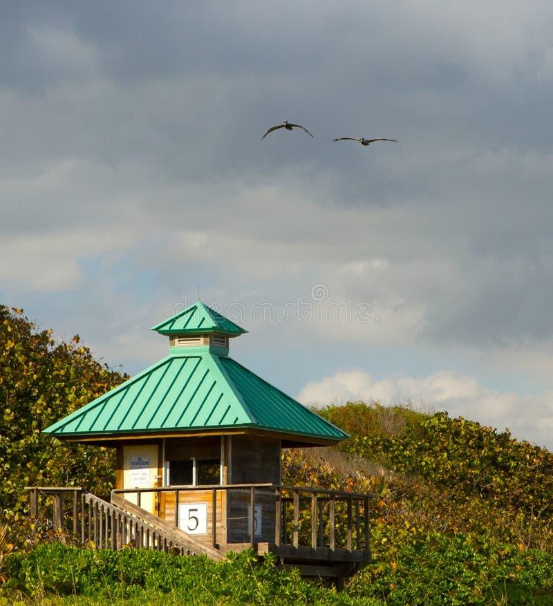 Torre do Lifeguard fotos de stock royalty free