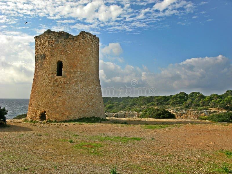Torre do pi de Cala foto de stock