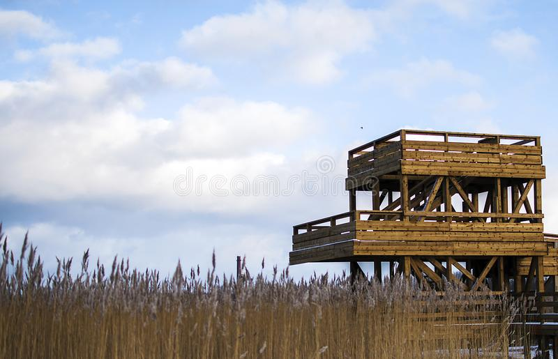 Torre do relógio do pássaro em Riga Letónia perto da linha de mar no tempo de inverno foto de stock