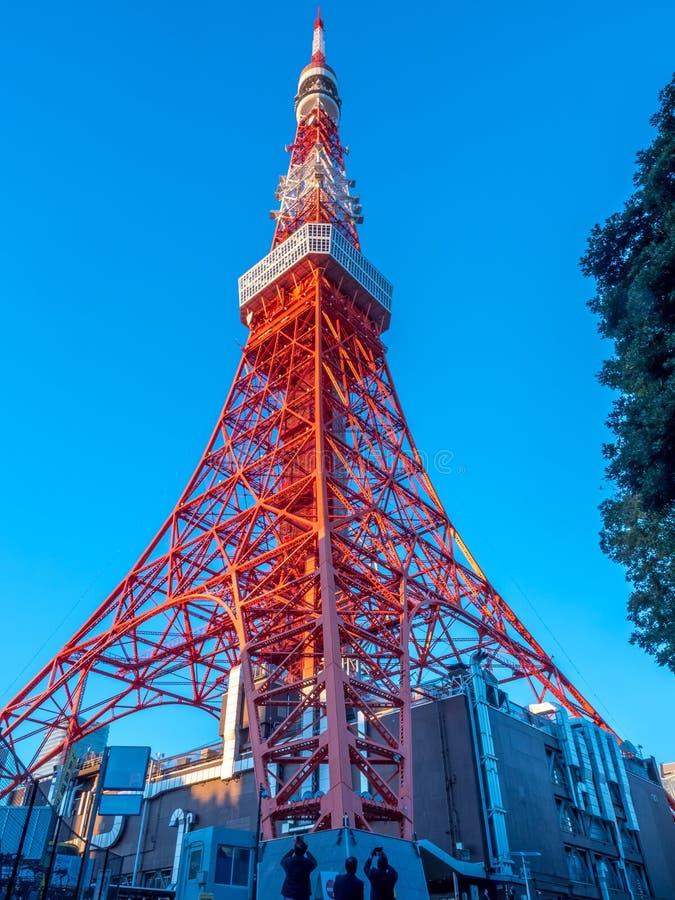 A torre do Tóquio é marco do Tóquio imagem de stock royalty free