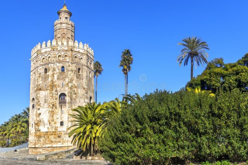Torre dorata, Siviglia, Andalusia, Spagna fotografia stock libera da diritti