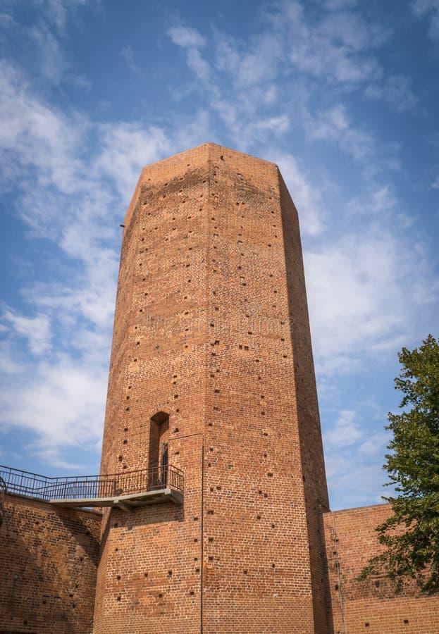 Torre dos ratos em Kruszwica no Polônia fotos de stock royalty free