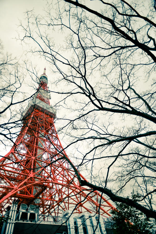 Torre e árvore do Tóquio na cena da fantasia imagens de stock royalty free
