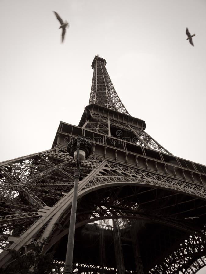 Torre Eiffel blanco y negro en la ciudad de París  imágenes de archivo libres de regalías