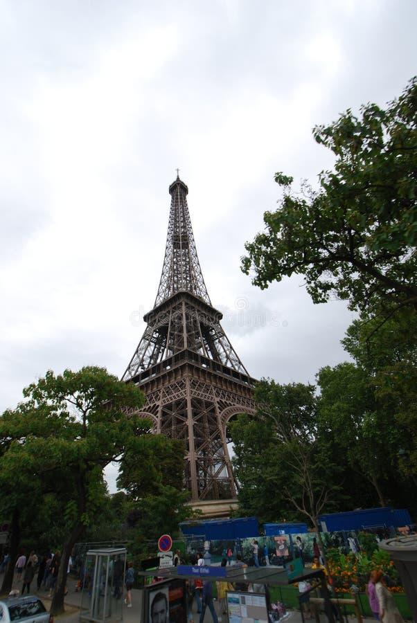Torre Eiffel, céu, árvore, planta, folha fotografia de stock royalty free