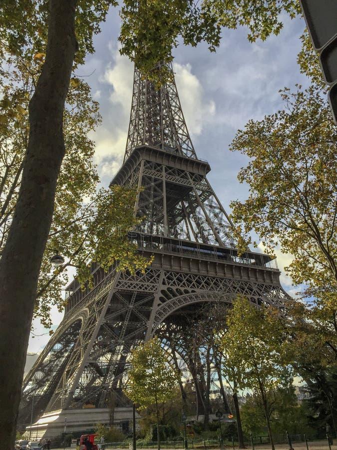 Torre Eiffel circondata dagli alberi immagini stock