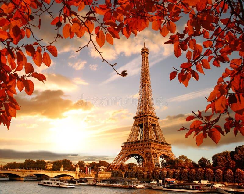 Torre Eiffel com as folhas de outono em Paris, France fotografia de stock royalty free