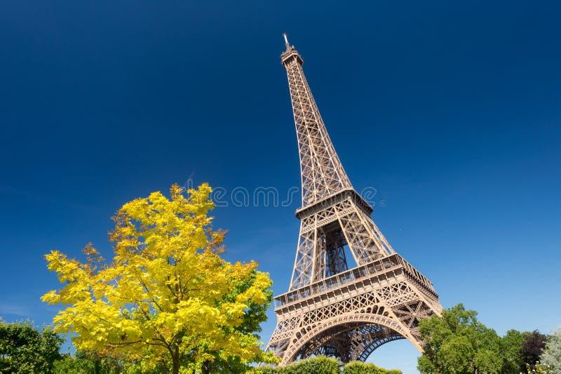 Torre Eiffel dai giardini del Champ de Mars di estate fotografie stock