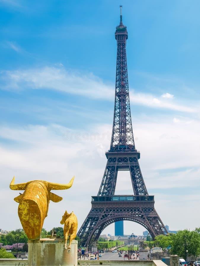 Torre Eiffel del cuadrado de Trocadero en París fotografía de archivo