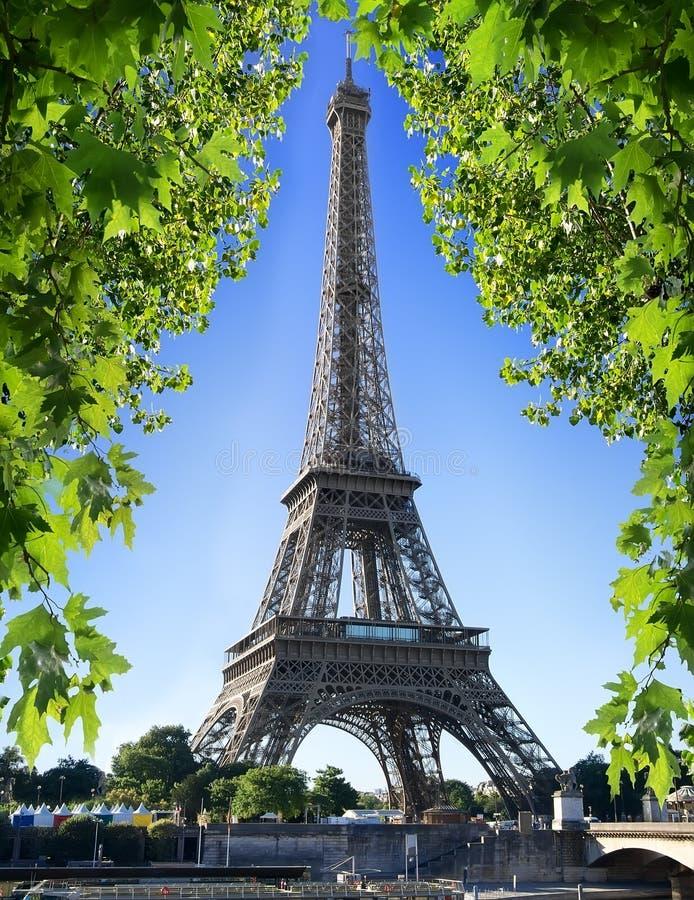 Torre Eiffel e natureza fotos de stock royalty free