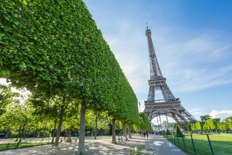 Torre Eiffel em Paris imagens de stock royalty free
