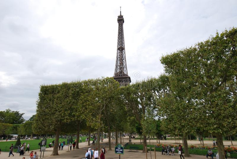 Torre Eiffel, marco, torre, monumento, árvore imagem de stock royalty free