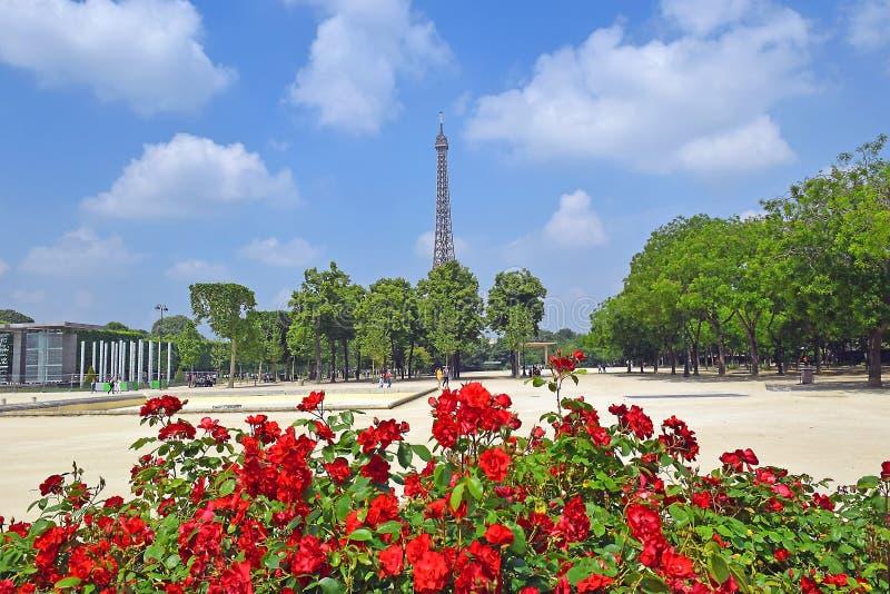 Torre Eiffel y rosas rojas, París, Francia imagenes de archivo