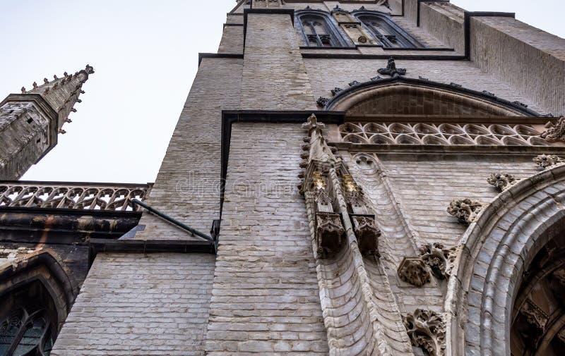Torre gótica del santo Bavo Cathedral foto de archivo