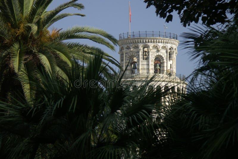 Torre inclinada imagem de stock royalty free