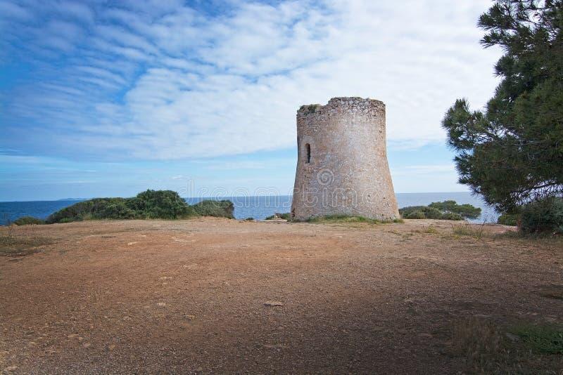 Torre Mallorca do pi de Cala foto de stock