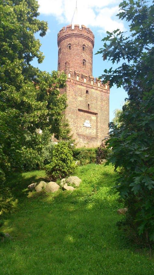 Torre medieval em Kamien Pomorski, Polônia fotos de stock