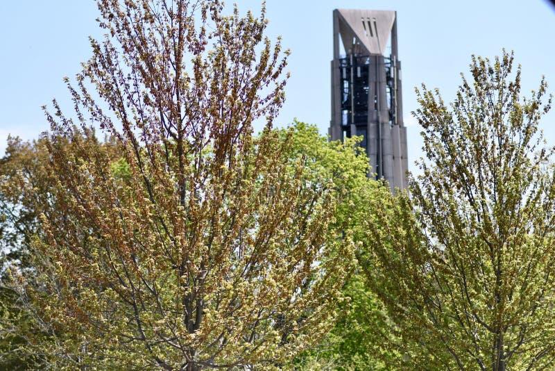 Torre Moser cercada por verde sob luz solar em Naperville, Illinois imagens de stock royalty free