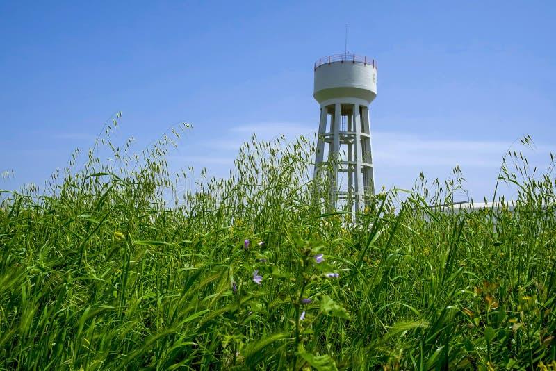 Torre nell'erba immagini stock