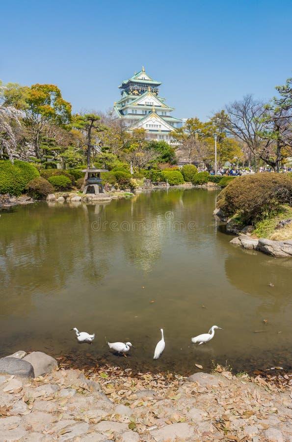 A torre principal da opinião de Osaka Castle do jardim japonês fotografia de stock