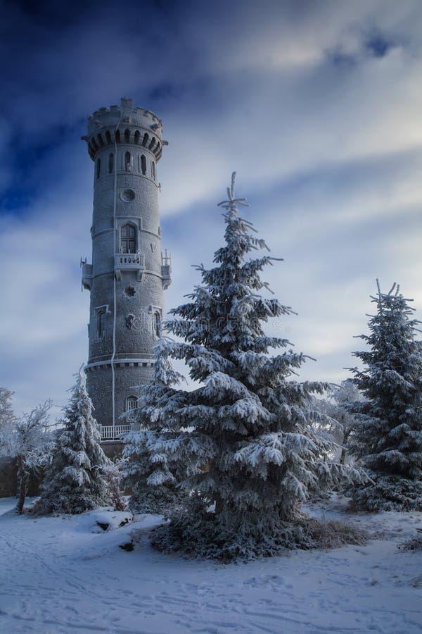 Torre su una stagione invernale immagine stock