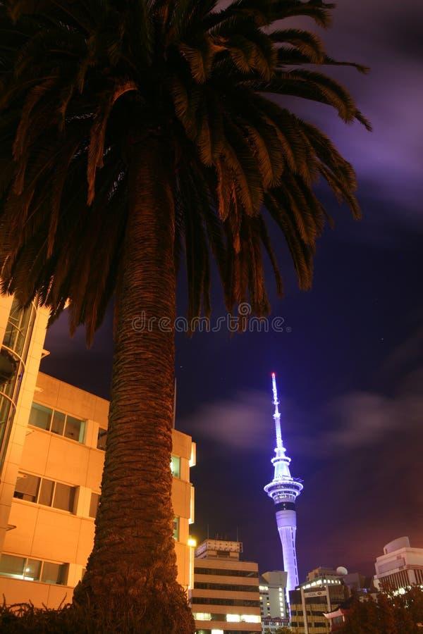 Torre y palmera del cielo foto de archivo