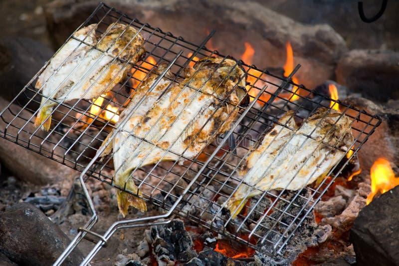 Torrefazione dei pesci sul fuoco fotografia stock libera da diritti