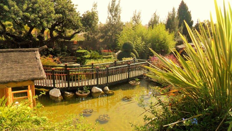 Torremolinos-Botánico Jardín-MOLINO DEL INCA- imagen de archivo libre de regalías