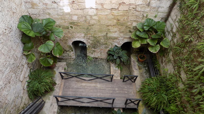 Torremolinos-Botanic Gardens-MOLINO DEL INCA-. Botanic garden-Molino del Inca-Torremolinos-Andalusia-Spain royalty free stock photography
