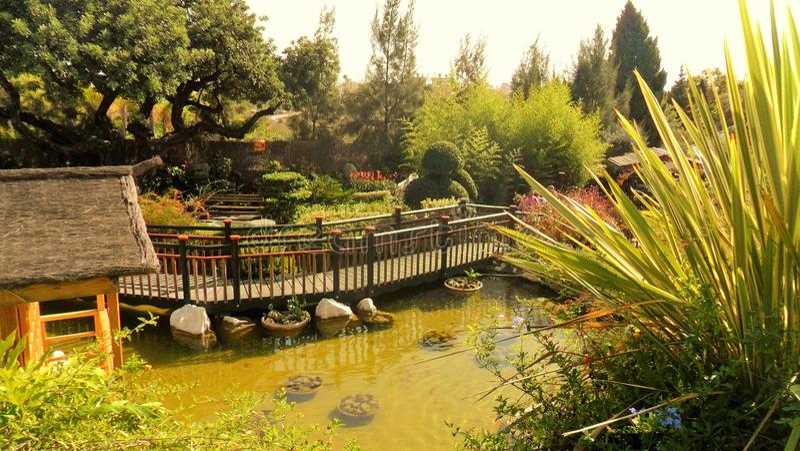 Torremolinos-Botanic Gardens-MOLINO DEL INCA-. Botanic garden-Molino del Inca-Torremolinos-Andalusia-Spain royalty free stock image