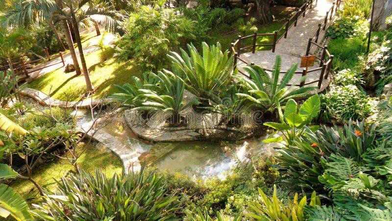 Torremolinos-Botanic Gardens-MOLINO DEL INCA-. Botanic garden-Molino del Inca-Torremolinos-Andalusia-Spain royalty free stock photo