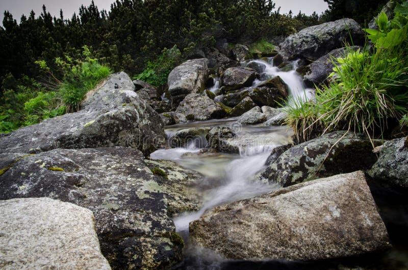 Torrent pur dans les montagnes images stock