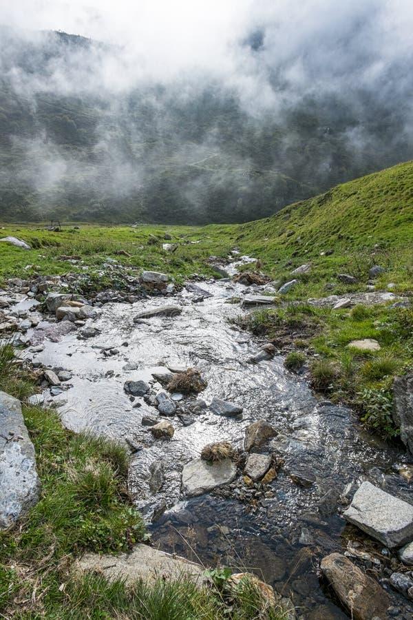 Torrente alpina foto de stock