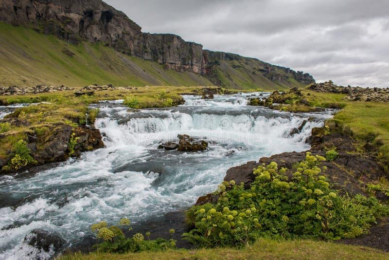 torrente in mezzo ad un prato in Islanda fotografie stock
