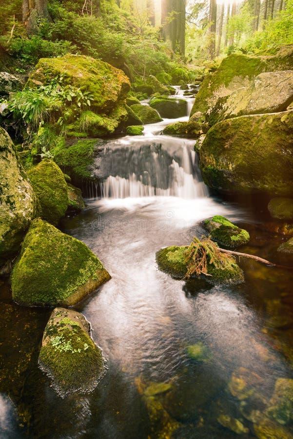 Torrente montano rapida in una valle verde fotografie stock
