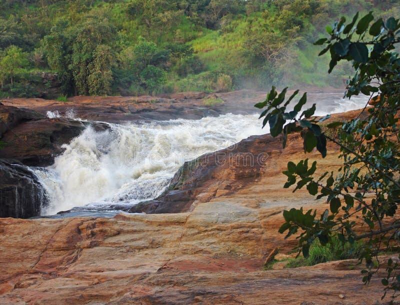 Torrente Raging em Murchison Falls fotos de stock