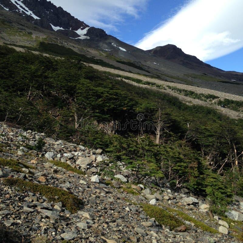 Torres Del Paine photos libres de droits