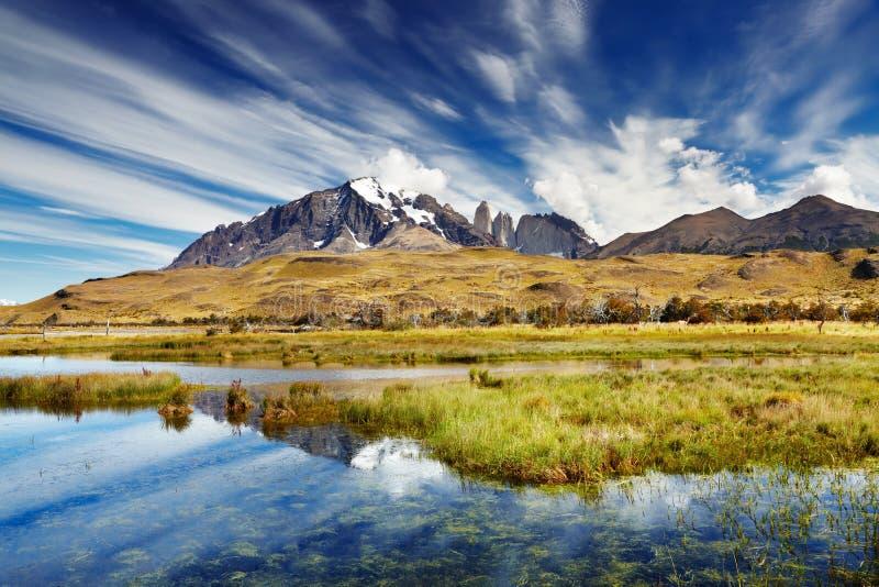 Torres del Paine, Cile immagine stock libera da diritti