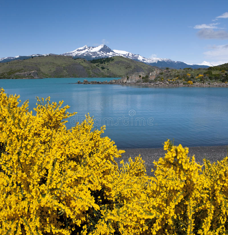 Download Torres Del Paine National Park - Chile Stock Photo - Image of america, park: 15388882