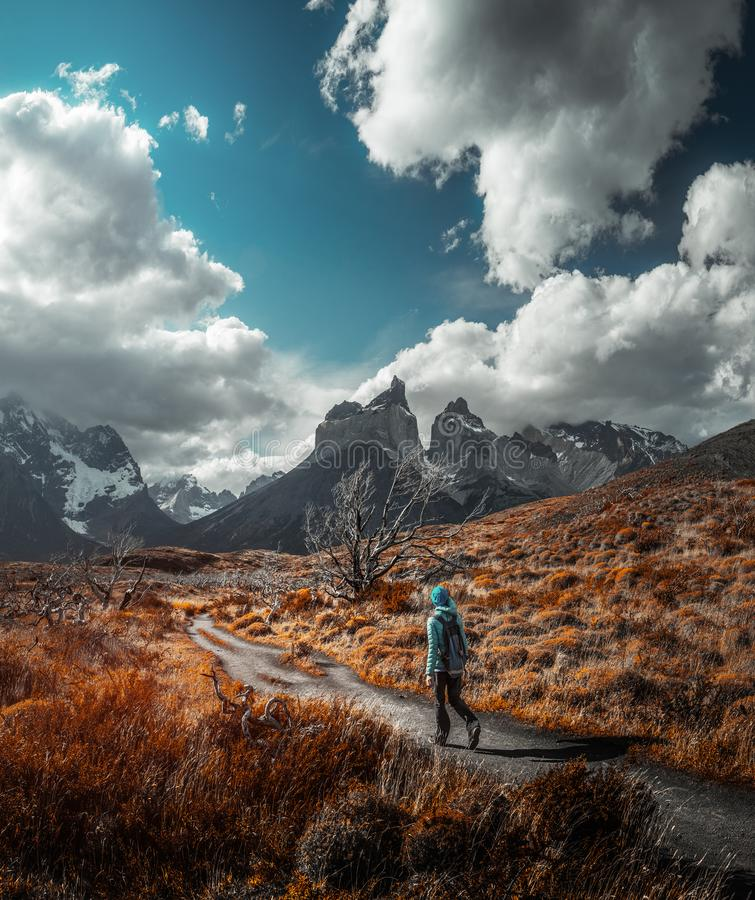 Torres del Paine National Park. Woman hiker walks on the trail among the burnt trees and dry grass with snow capped mountains on the background. Torres del Paine royalty free stock photography