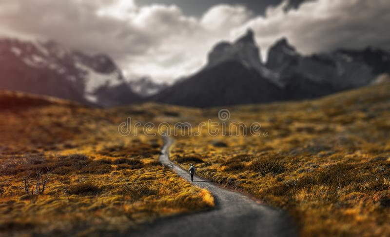 Torres del Paine National Park. Woman hiker walks on the trail in Torres del Paine National Park, Chilean Patagonia. Tilt shift effect applied royalty free stock images