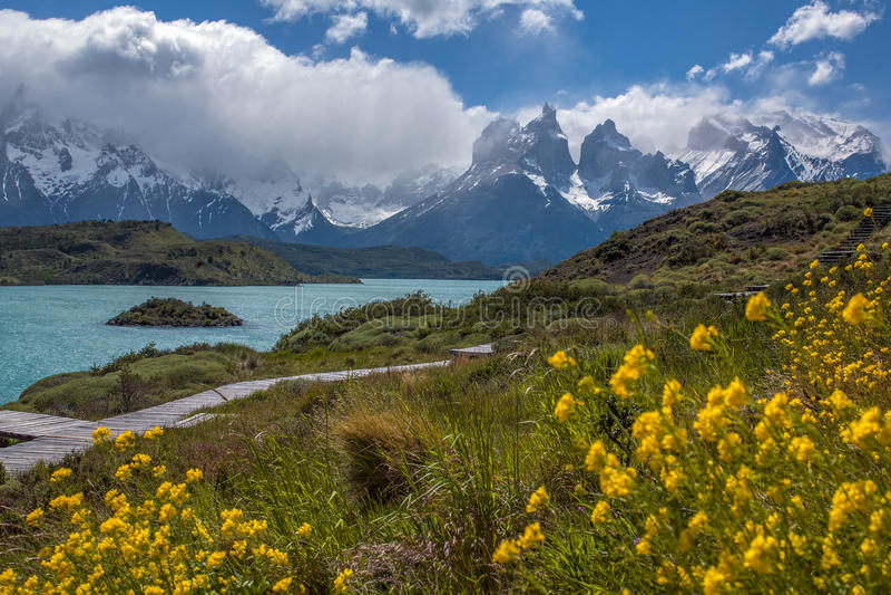 Torres del Paine - Patagonia - Chile royaltyfria foton
