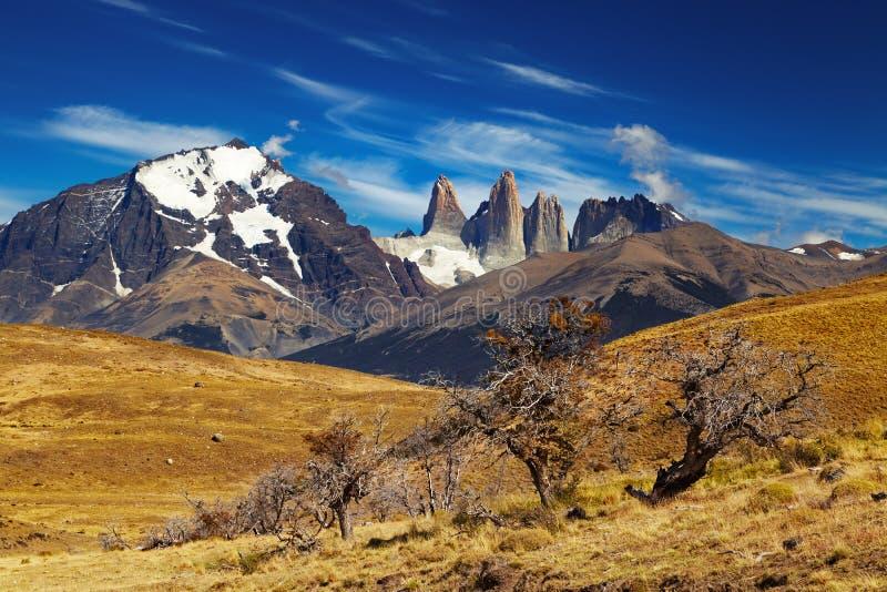 Torres del Paine, Patagonia, o Chile fotos de stock royalty free