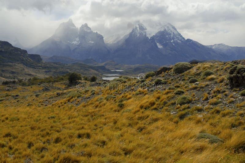 Torres Del Paine, südlicher Patagonia, Chile lizenzfreie stockfotos
