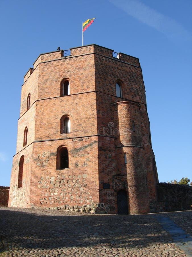 Download Torreta em Vilnius imagem de stock. Imagem de rampart - 16855041