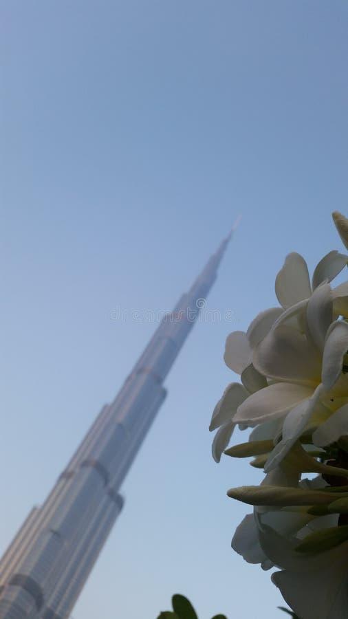 Torretta di Khalifa immagine stock
