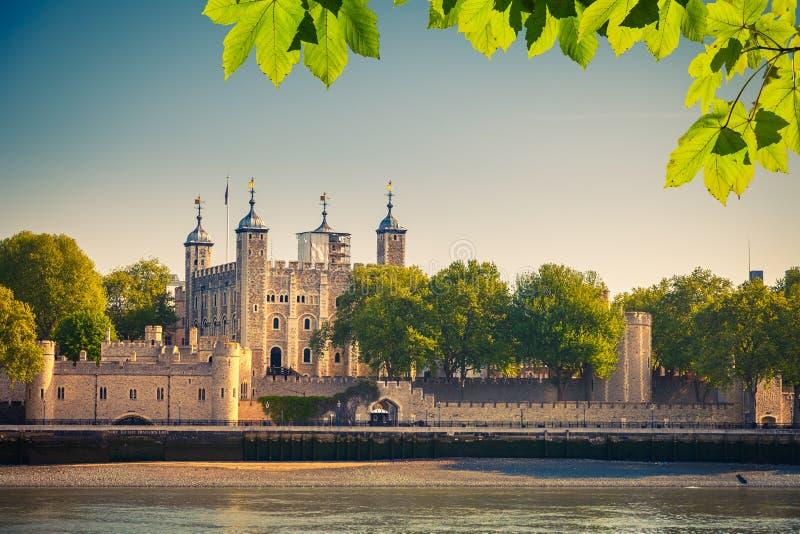 Torretta di Londra fotografia stock libera da diritti